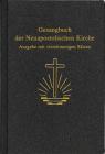 Gesangbuch, Kunstleder
