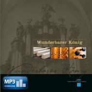 Concerto für zwei Orgeln in B-Dur (MP3)