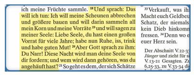 Stuttgarter Erklärungsbibel Lutherbibel mit Erklärungen