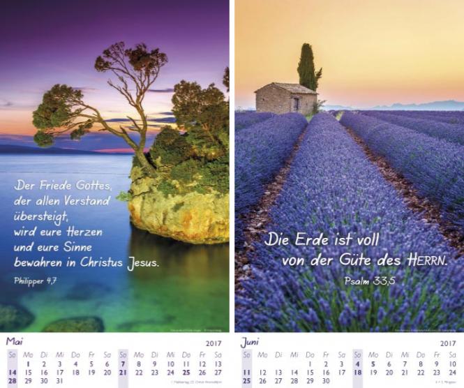 Faszinierende Schöpfung 2017 Kalender