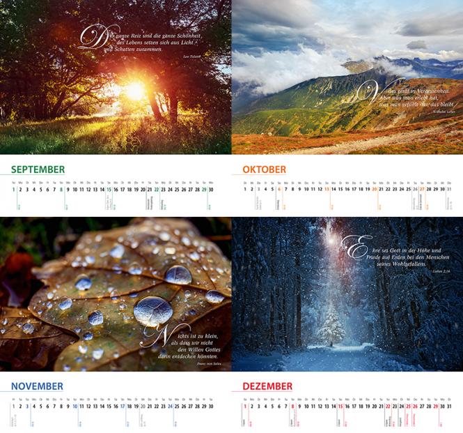 Schöpfung 2019 Wandkalender